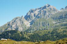 Free Brenta Dolomites, Italian Apls. Stock Images - 16265684