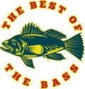 Free Sea Bass Fish Best Stock Image - 16270581