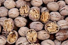 Free Walnuts Royalty Free Stock Image - 16270686