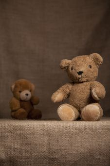 Free Scruffy Teddy Bears Stock Images - 16273124
