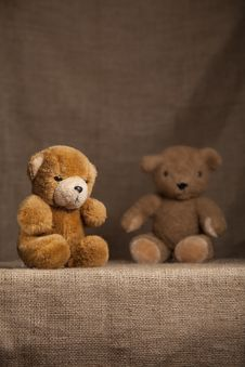 Free Scruffy Teddy Bears Royalty Free Stock Photo - 16273135