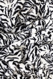 Zebra Fabric Texture Stock Photos