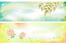 Free Flower Banner Vector Royalty Free Stock Photo - 16274065