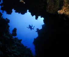 Underwater Canyon And Diver Stock Image
