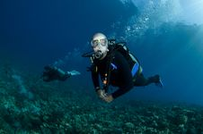 Free Scuba Divers On A Tropical Reef Royalty Free Stock Photos - 16274858