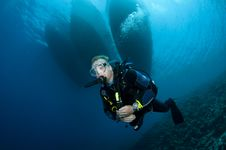 Free Scuba Diver Royalty Free Stock Photography - 16274877