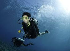Free Yellow Coral And Scuba Divers Stock Photography - 16274902