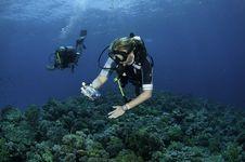 Free Scuba Diver Takes Photo Stock Photos - 16274943