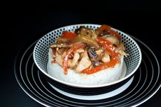 Asian Rice Topped With Chicken Royalty Free Stock Image