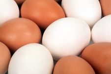 Free Abstract Picture From Eggs Stock Photo - 16279090