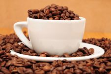Free Cup Full Of Coffee Beans Stock Images - 16279714