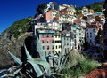 Free Cinque Terre Stock Image - 16288541