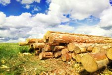 Woodpile In Field Stock Photos