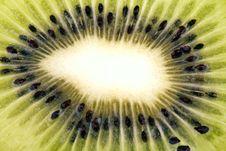 Free Kiwi Closeup Royalty Free Stock Image - 16282926