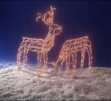 Free Lighted Reindeer Royalty Free Stock Images - 16283199