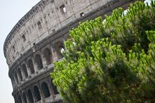 Free Colosseum Royalty Free Stock Images - 16283789