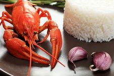 Crawfish And Rice Stock Photos