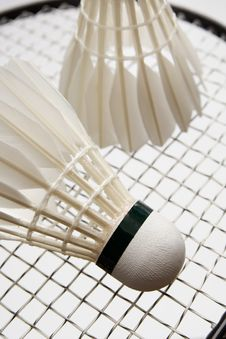 Free Badminton Shuttlecocks On The Racket Stock Photo - 16284870