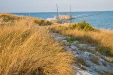 Free Sea Stock Photo - 16285050