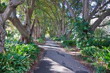 Free Botanic Garden Royalty Free Stock Image - 16285136