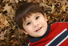 Free Boy In Leaves Royalty Free Stock Image - 16287456