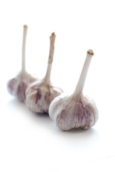 Free Garlic Royalty Free Stock Photography - 16288287