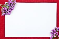 Free Card With Flowers Stock Photography - 16288762