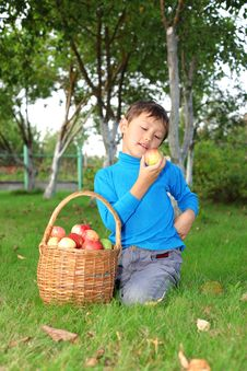 Free Little Boy With Apples Royalty Free Stock Photo - 16289885