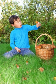 Free Little Boy With Mushrooms Royalty Free Stock Image - 16289956