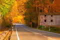 Free Nice Forest In Autumn Royalty Free Stock Photos - 16291448