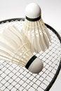 Free Badminton Shuttlecocks On The Racket Stock Images - 16291864