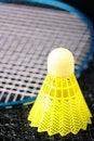 Free Badminton Equipment Stock Photos - 16293393