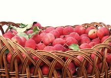 Free Basket Of Apples Royalty Free Stock Photography - 16291587