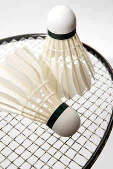 Free Badminton Shuttlecocks On The Racket Stock Images - 16291864