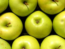 Free Green Apples Texture Royalty Free Stock Photography - 16291937