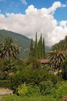 Free Resort In Subtropics. Royalty Free Stock Image - 16292216