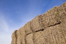 Free Bale Of Haystack Stock Photos - 16292523