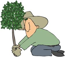 Free Man Planting A Tree Stock Image - 16292821