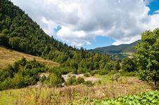 Free In Lake Ritsa Vicinities. Abkhazia. Royalty Free Stock Photos - 16293318