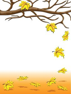 Free Autumnal Falling Of The Leaves Royalty Free Stock Photos - 16294488