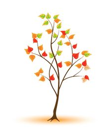 Free Young Autumnal Tree Stock Photo - 16294520