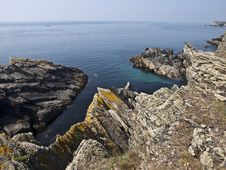 Free Anglesey Coastal Path Wales Stock Photos - 16294943