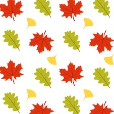 Free Autumn Pattern Royalty Free Stock Photos - 16296108