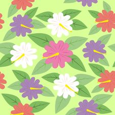 Free Flowers Seamless Pattern Stock Images - 16296544