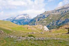 Free Valley At Pyrenees Royalty Free Stock Photos - 16297298
