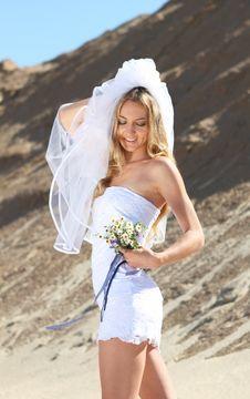 Free Smiling Bride Royalty Free Stock Image - 16297956