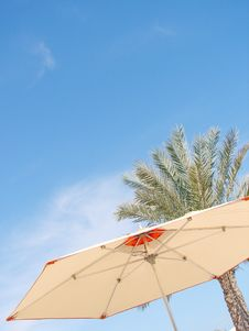 Beach Umbrella, Palm And Sky Royalty Free Stock Images