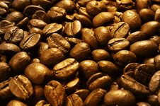 Free Roasted Coffee Beans Royalty Free Stock Images - 16299039