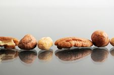Row Of Nuts With Copyspace Royalty Free Stock Image