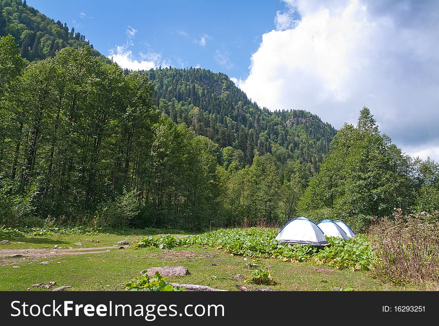 In lake Ritsa vicinities. Abkhazia.